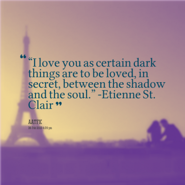anna and the french kiss fav quote 8